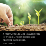 A joyful soul is like healthy soil in which life can thrive and produce good fruit.  - Pope Francis