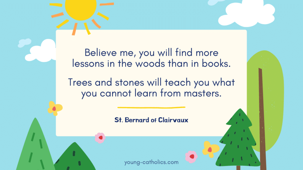 """A St. Bernard of Clairvaux quote: """"Believe me, you will find more lessons in the woods than in books. Trees and stones will teach you what you cannot learn from masters."""" Shown over a graphic with trees, flowers, blue sky, sun, and clouds."""